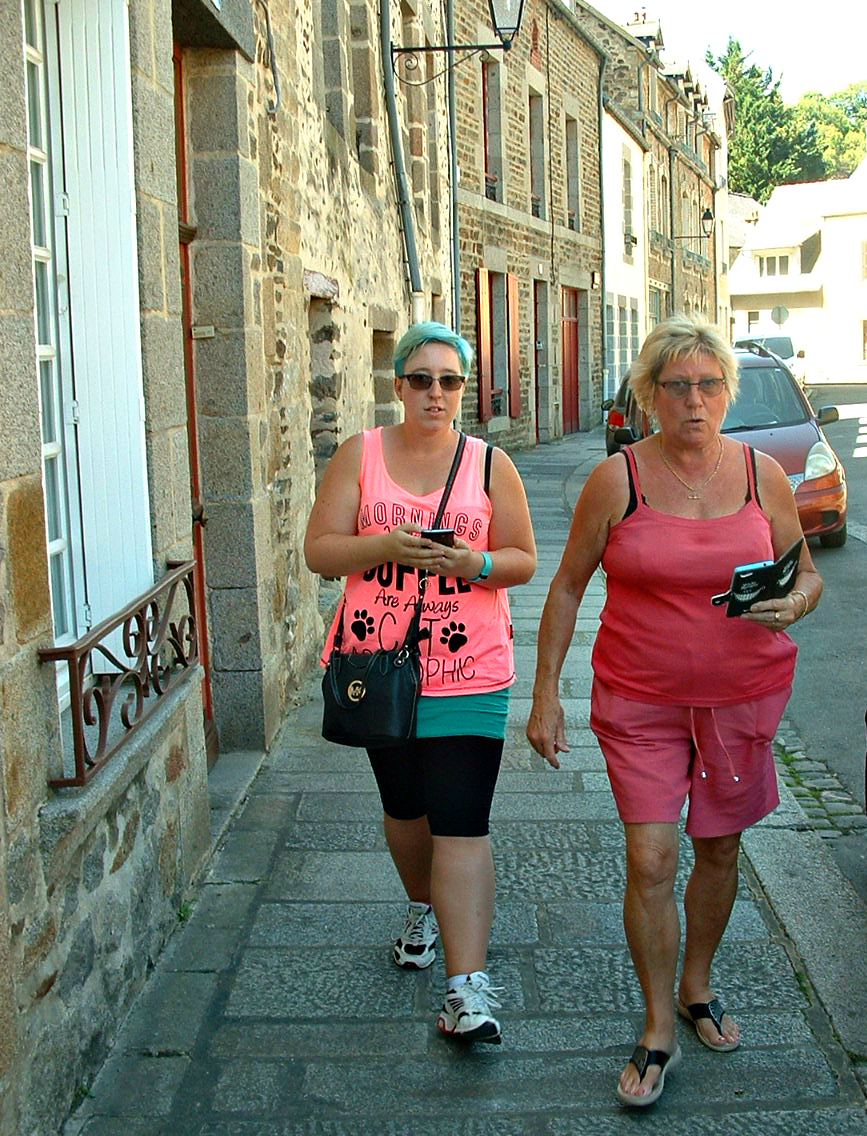 Pokemon Hunting: Fougeres