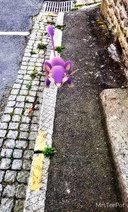 Pokemon Go Ratata