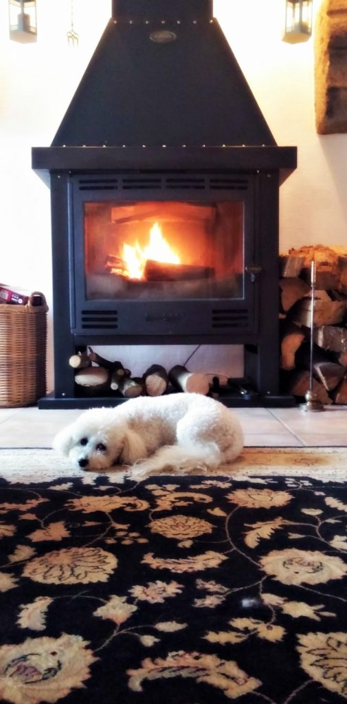 TiLi in front of fire oct 2016